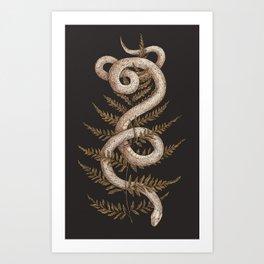 The Snake and Fern Kunstdrucke