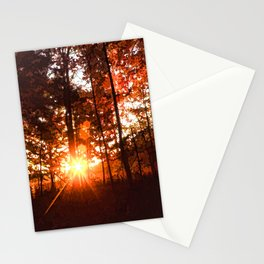 Dawn in the Woods Stationery Cards