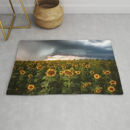 Don't Look Back - Sunflowers Face Away From Storm in Kansas Rug