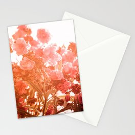 oleander series // no. 4 Stationery Cards