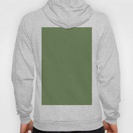 Spring 2017 Designer Colors Kale Green Hoody