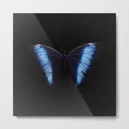 Blue Wings Metal Print