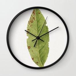 Vintage peach leaf Wall Clock
