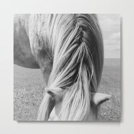 Horse Photography | Horse Mane Metal Print