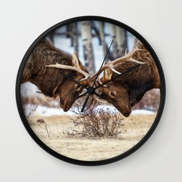 Elk In Rut Colorado Wildlife Rocky National Park Wall Clock