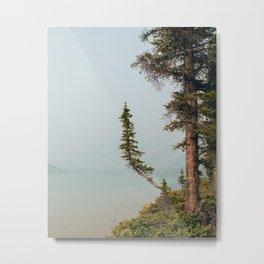 Lone Pine at Bow Lake Metal Print