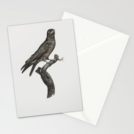 Great barbet from Histoire Naturelle des Oiseaux de Paradis et Des Rolliers (1806) by Jacques Barrab Stationery Cards