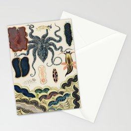 Barrier Reef Molluscs and Planarians from The Great Barrier Reef of Australia Stationery Cards