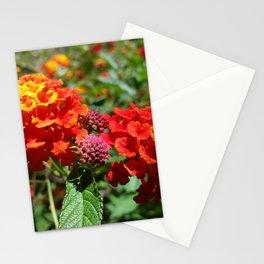 NoCal Lantana Camara Stationery Cards