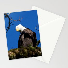 Perching Eagle Stationery Cards