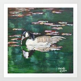 Canada Goose Lake Art Print