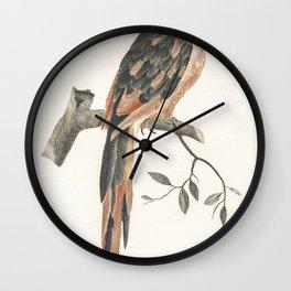 Amaryllis Formosissima by CJ Kruimel (1817) Wall Clock