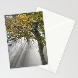 Sunrays Through The Oaks. Autumn dreams. Sierra Nevada Stationery Cards