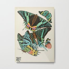 Butterfly and Moth Print by E.A. Seguy, 1920s #16 Metal Print