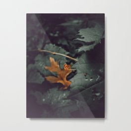 Shapes of Nature Metal Print