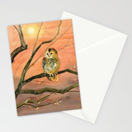 Colorful Owl Art Stationery Cards