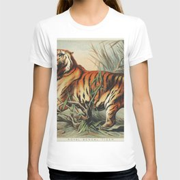 Royal bengal tiger from Johnson's household book of nature (1880) by John Karst (1836-1922) T-shirt