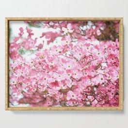 PRETTY PINK FLOWERS - DOGWOOD TREE 3 Serving Tray