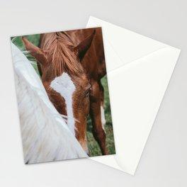 Shy Guy Stationery Cards