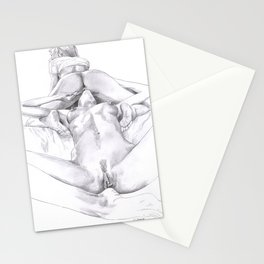 A Woman's Passion Stationery Cards