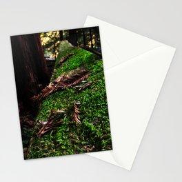 Needled Moss Stationery Cards