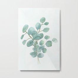 Eucalyptus Silver Dollar Metal Print