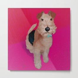 Wire Fox Terrier Portrait Metal Print