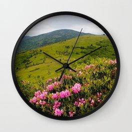 Desktop Wallpapers USA North Carolina Roan Mountain Nature mountain Rhododendron Mountains Wall Clock