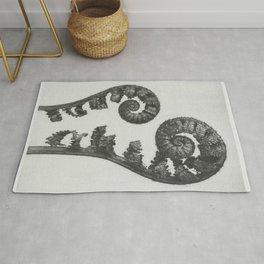 Aspidium Filix Mas (Shield Fern Fronds) enlarged 4 times from Urformen der Kunst (1928) by Karl Blos Rug