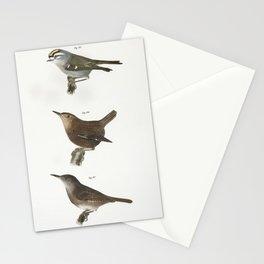 84 The Mocking-bird (Orpheus polyglottus) 85 The Cat-bird (Orpheus carolinensis) 86 The Wood Thrush Stationery Cards