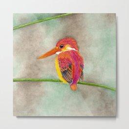 Kingfisher III: Valor Metal Print