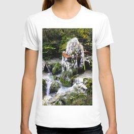 Waterfalls and Big Climbing Rock T-shirt