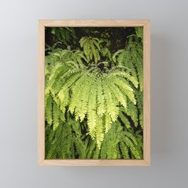 Fern. Framed Mini Art Print