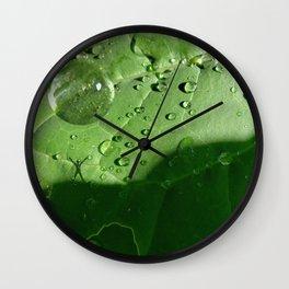 Reinvigorate Wall Clock