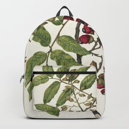 Antique plant Titoki drawn by Sarah Featon (1848-1927) Backpack