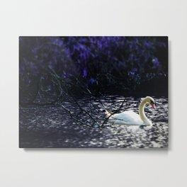 Midnight Drift.  Purple Ocean Swan at Night. Metal Print