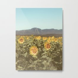 Summer Sunflower Field Metal Print
