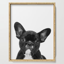 Black and White French Bulldog Serving Tray