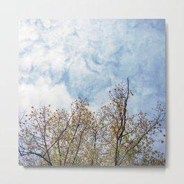 Autumn branches Metal Print