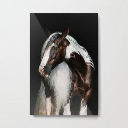 Paint horse   horse fine art work Metal Print