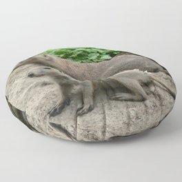 Prairie dogs 04 Floor Pillow