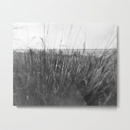 Ray Roberts 03 Metal Print