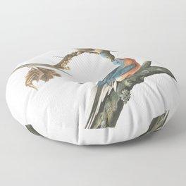 Passenger pigeon, Birds of America, Audubon Plate 62 Floor Pillow