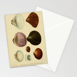 Vintage Print - Universal Dictionary of Natural History (1849) - Molluscs 4 Stationery Cards