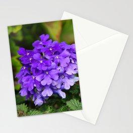 Purple Blue Flowers Plants Miniature Garden Stationery Cards