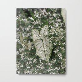 the color green Metal Print