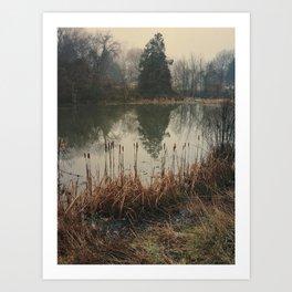 Morning Fog, Annandale, VA Art Print
