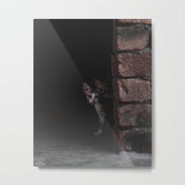 Little Kitty Metal Print