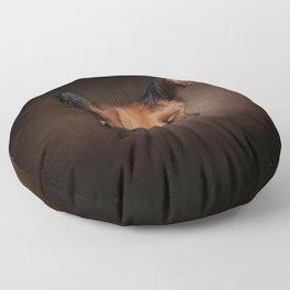 Arabian Bay Horse Floor Pillow