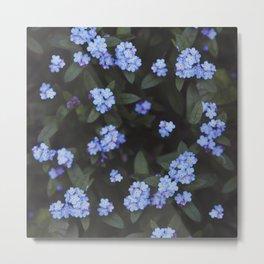 Blue Dark Floral Garden: Forget-me-nots Metal Print